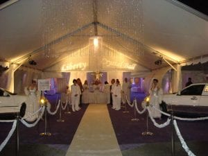 'Crystal ball themed corporate event featuring a 30'' x 40'' entrance tent, custom gobos, models, and white stretch limos.