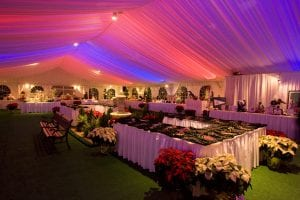 50' x 90' tent liner back lit with red, white and blue LED lights.
