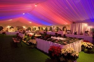 50' x 90' silent auction tent featuring a tent liner back lit in red, white, and blue, green carpet and seasonal decor.