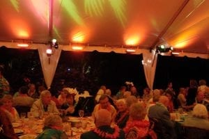 Luau style fundraiser in a 50' x 75' frame tent featuring specialty lighting, leg drapes, and bamboo chairs.