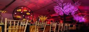 Elegant Party tent