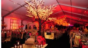 Black tie fundraiser held in a 20m x 50m clear span tent featuring LED lighted cherry trees, white wall drapes accented with lighted spandex panels, gold ballroom chairs, and kings tables.