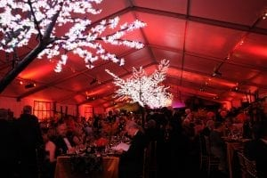 Magenta, pink and amber color washing with LED lighted cherry trees in a 20m structure tent.